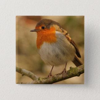 Robin in Sunshine 2 Inch Square Button