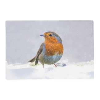 Robin In The Snow Placemat Laminated Place Mat