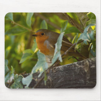 Robin Mouse Pad