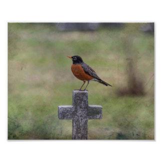 Robin on a cross photo print