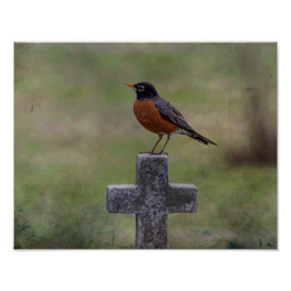 Robin on a cross poster