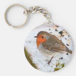 Robin on a snowy log basic round button keychain