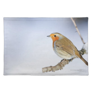Robin perched on a branch in winter placemats