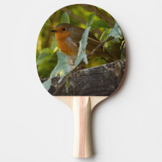 Robin Ping Pong Paddle