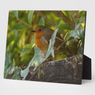 Robin Plaque