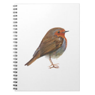 Robin Red Breast Bird Watercolor Painting Artwork Notebooks