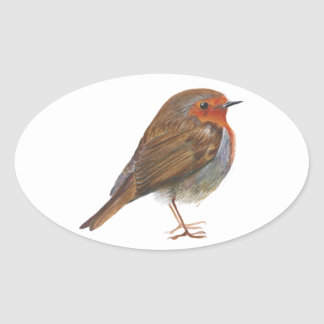 Robin Red Breast Bird Watercolor Painting Artwork Oval Sticker