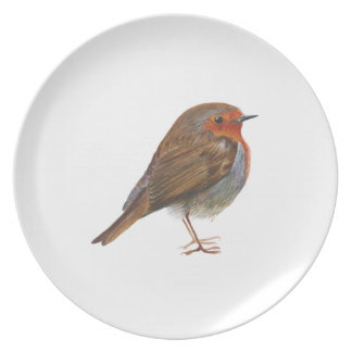 Robin Red Breast Bird Watercolor Painting Artwork Plate