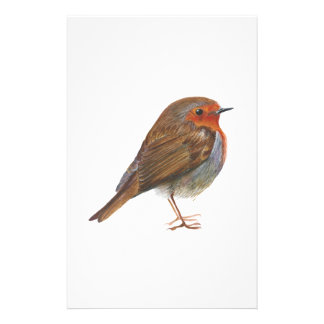 Robin Red Breast Bird Watercolor Painting Artwork Stationery