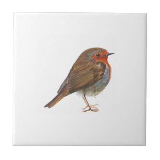 Robin Red Breast Bird Watercolor Painting Artwork Tile