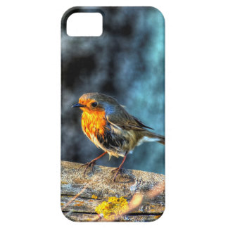Robin Red Breast iPhone 5 Case
