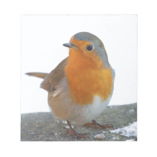 Robin Red Breast Notepad