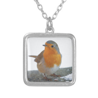 Robin Red Breast Silver Plated Necklace