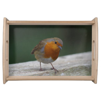 Robin Serving Tray