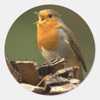 Robin Singing Stickers