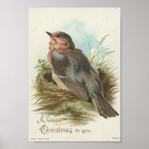 Robin vintage, Noël Posters