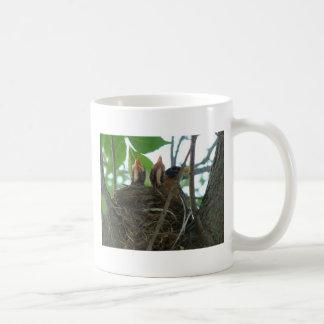 Robin With Babies Coffee Mug