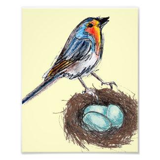Robin's Egg Nest print art Robin Bird 8x10 Photographic Print