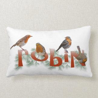 Robins Pillow (choose colour)