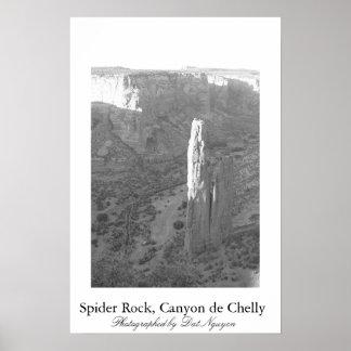 Roche d'araignée, Canyon de Chelly Poster