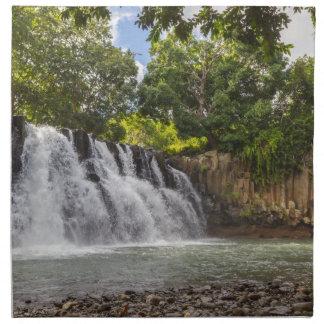 Rochester Falls waterfall in Souillac Mauritius Napkin