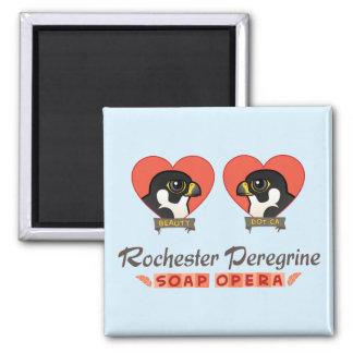 Rochester Peregrine Soap Opera Square Magnet