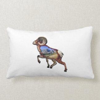 Rock and Ramble Lumbar Pillow