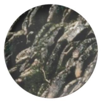 rock bends texture plate