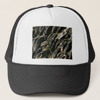 rock bends texture trucker hat