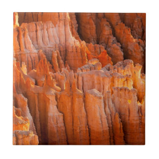 Rock Hoodoos in Morning Light Tile
