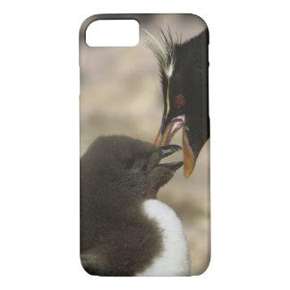 Rock-hopper Penguin, Eudyptes chrysocome, iPhone 7 Case