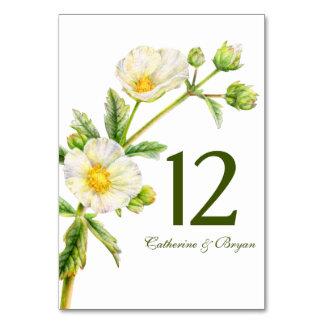 Rock rose watercolor flower wedding table number