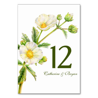 Rock rose watercolor flower wedding table number table card