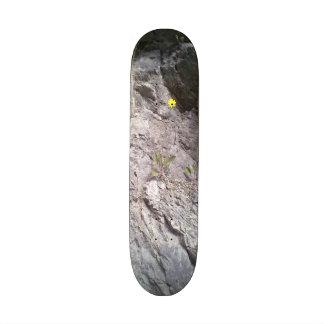 Rock & Stone Skate Board Deck