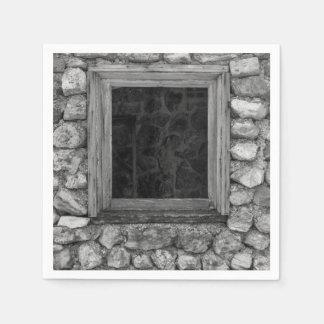Rock Wall Window Grayscale Disposable Napkin
