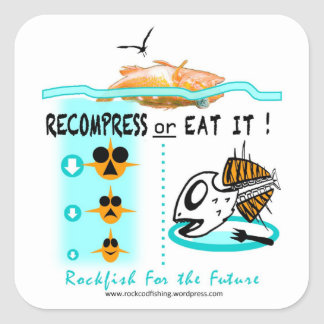 Rockfish fishing stickers, Recompress Or Eat It Square Sticker