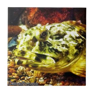 Rockfish Tile