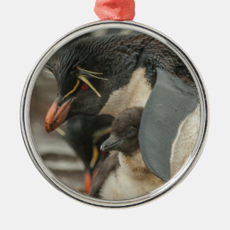 Rockhopper penguin and chick Silver-Colored round ornament