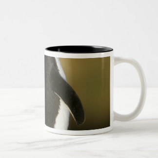 Rockhopper Penguin, Eudyptes chrysocome), Two-Tone Coffee Mug