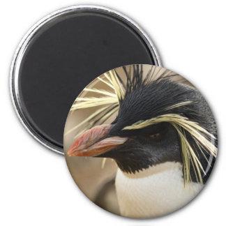 Rockhopper Penguin  Magnet