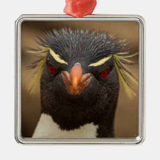 Rockhopper penguin portrait Silver-Colored square ornament