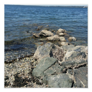 Rocks on Pacific Northwestern beach. Bellingham WA Poster