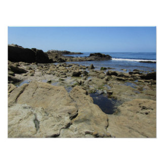 Rocky beach at Laguna Beach - California coast Poster