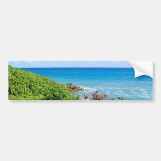 rocky-foliage-coast-deerfield-beach-4s6490 bumper sticker