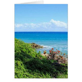 rocky-foliage-coast-deerfield-beach-4s6490 card