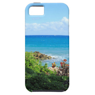 rocky-foliage-coast-deerfield-beach-4s6490 case for the iPhone 5
