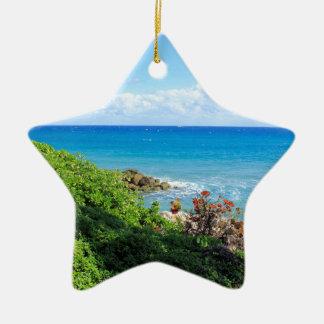 rocky-foliage-coast-deerfield-beach-4s6490 ceramic star ornament