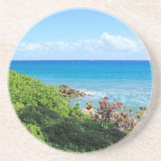 rocky-foliage-coast-deerfield-beach-4s6490 coaster
