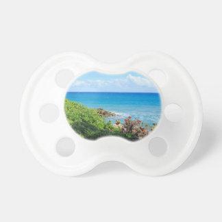 rocky-foliage-coast-deerfield-beach-4s6490 pacifier