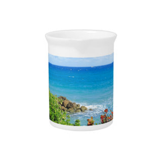 rocky-foliage-coast-deerfield-beach-4s6490 pitcher